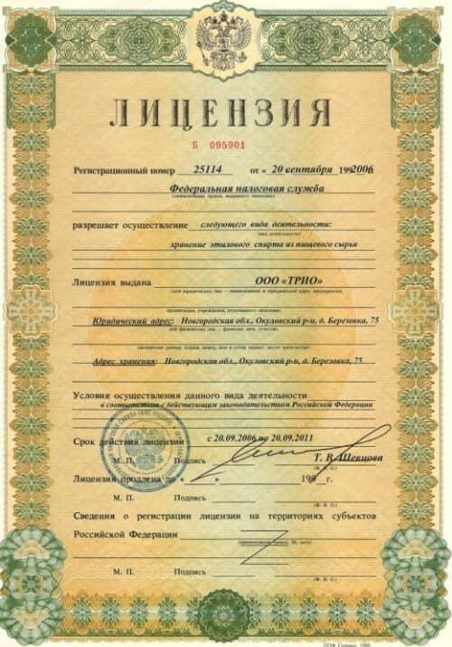 На картинке показана один из видов лицензии на алкоголь