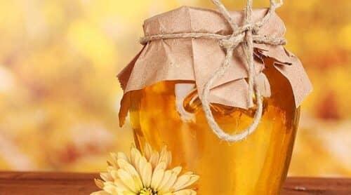 Результатом пчеловодства выступает не только доход, но и здоровье