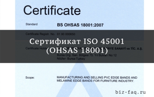 ISO 45001 (OHSAS 18001)