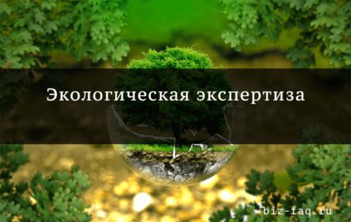 Государственная экологическая экспертиза является